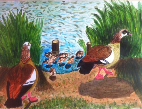 Egyptian Geese Family Painting, Raphael Park, Romford